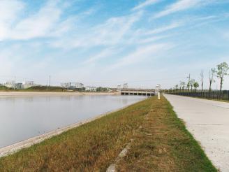 潜江市江汉运河宽幅林带建设项目<